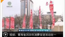 青海省2020年消費促進活動在西寧啟動