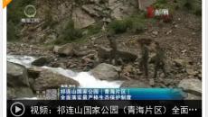 祁連山國家公園(青海片區)全面落實最嚴格生態保護制度
