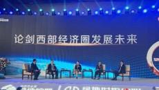 著名财经人物叶檀空降青海2020中国西部经济圈论坛