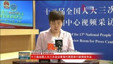【逐梦新征程 直通全国两会】十三届全国人大三次会议青海代表团举行新闻发布会