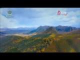 """【建設""""五個示范省""""推動青海高質量發展】青海:清潔能源領跑綠色發展"""