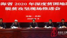 青海省2020年深度贫困地区  脱贫攻坚现场推进会召开