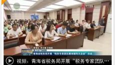 """青海省稅務局開展""""稅務專家團隊精準輔導大企業""""活動"""