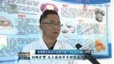 海東:優培良種助推馬鈴薯產業發展