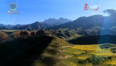 祁連默勒:生態巡護隊讓草原更美