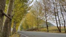 祁连山国家公园寺沟管护站:尽我所能 保护我们自己的这片山水