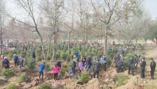 青海互助开展秋季义务植树活动