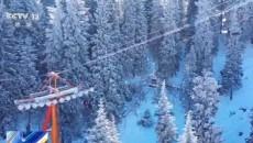 """冰雪产业正""""火热""""!新雪季拉开序幕 多家滑雪场"""