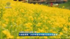"""大通縣榮獲""""2020中國鄉村振興百佳示范縣市"""""""