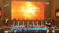 青海省中小微企業綜合金融服務平臺揭牌