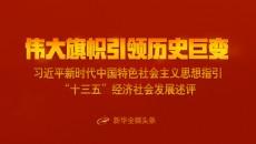 """伟大旗帜引领历史巨变——习近平新时代中国特色社会主义思想指引""""十三五""""经济社会发展述评"""