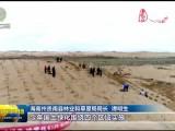 【绿动高原】3、统筹治山治水治沙 持续用力久久为功