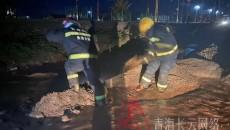 紧急!青海玛沁县大武镇突降暴雨 内涝严重街道变河流