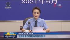 青海省发布四起毒品典型案例