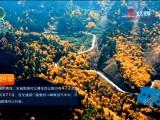 【沿着高速看青海】交通:开路在江河源头