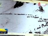 【沿着高速看青海】莫河骆驼场:传承革命精神 赓续红色血脉