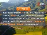 美高梅软件联播 20210620