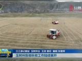 【关注第四个中国农民丰收节】玉树州各地秋收工作陆续展开