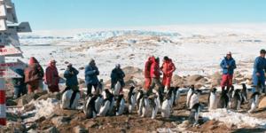 百年瞬间57:南极中山站建成