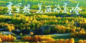 官方美高梅238:塞罕坝的春天