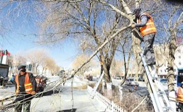 园林工人修剪树枝除隐患