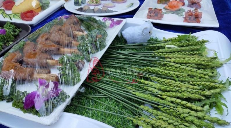 嘗美食 觀表演  西寧城東美食評選活動舉行