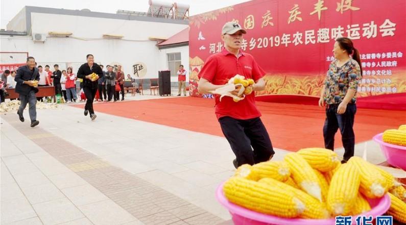 农民运动会 喜迎丰收节