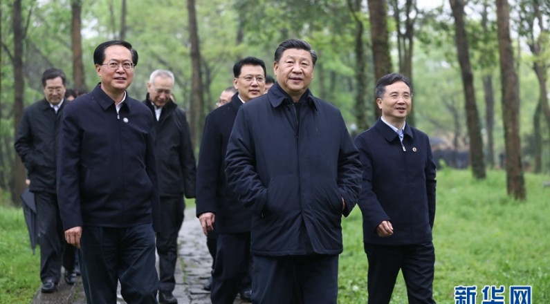 习近平考察杭州湿地保护利用和城市治理情况