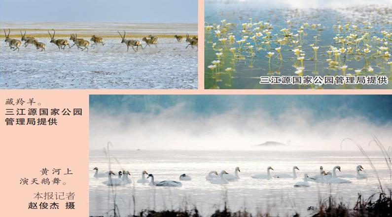 【喜迎全国两会】我国首个!三江源国家公园今年正式设立