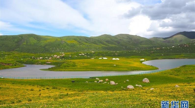 绿水青山筑起脱贫致富路——走访青海藏区看变化
