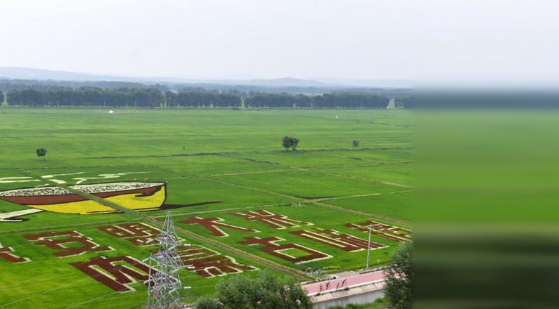 【走向我们的小康生活】科技助力绿色发展 草原经济呈现新景象